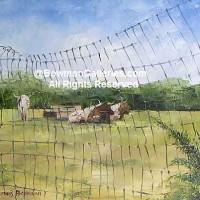 Painting - Longhorn