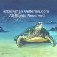 Painting - Sea Turtle